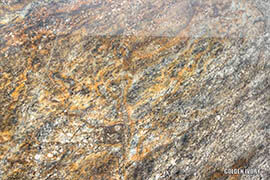 Golden Ivory Granite