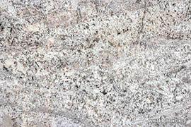 White Terrincino Granite
